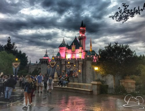 Anaheim City Attorney Informs City Council That Disneyland Resort is Exempt From Measure L