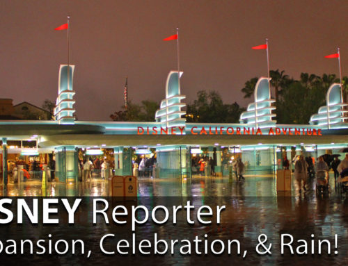 Expansion, Celebration, & Rain! – DISNEY Reporter