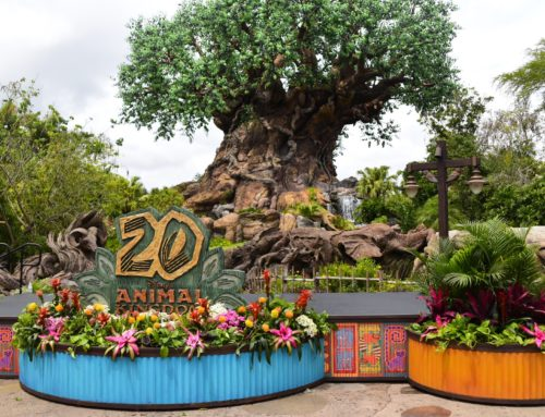 Party For The Planet: Animal Kingdom's 20th Anniversary