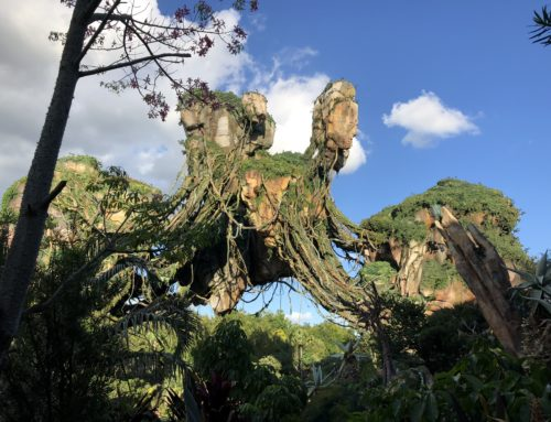 Have a Wild Time with the DAPs Magic Crew at Disney's Animal Kingdom at Walt Disney World Resort