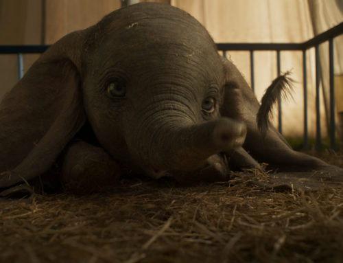 Disney Releases New Trailer, Poster, and Images for Dumbo!