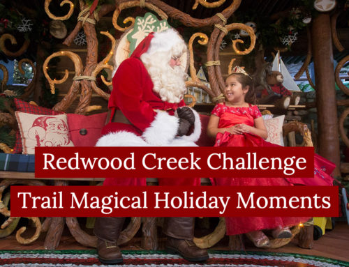 Redwood Creek Challenge Trail Magical Holiday Moments – Sundays with DAPs