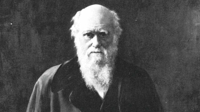 Disney to Develop Film About Charles Darwin