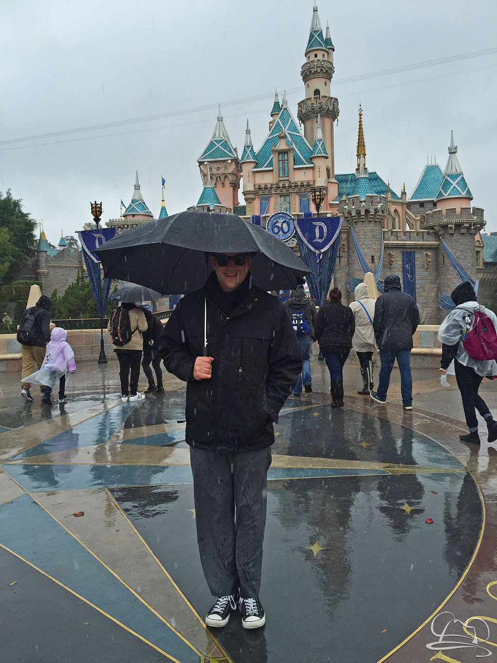 When and When Not To Visit Disneyland