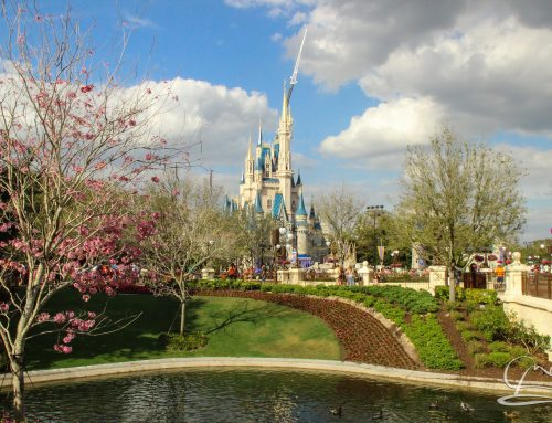 Mr. DAPs Goes to Walt Disney World – Be Our Guest at Epcot!