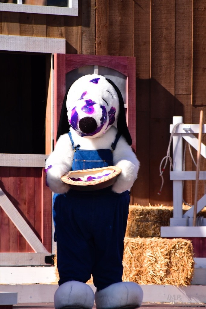 A Bigger and Better Boysenberry Festival 2017 at Knott's Berry Farm