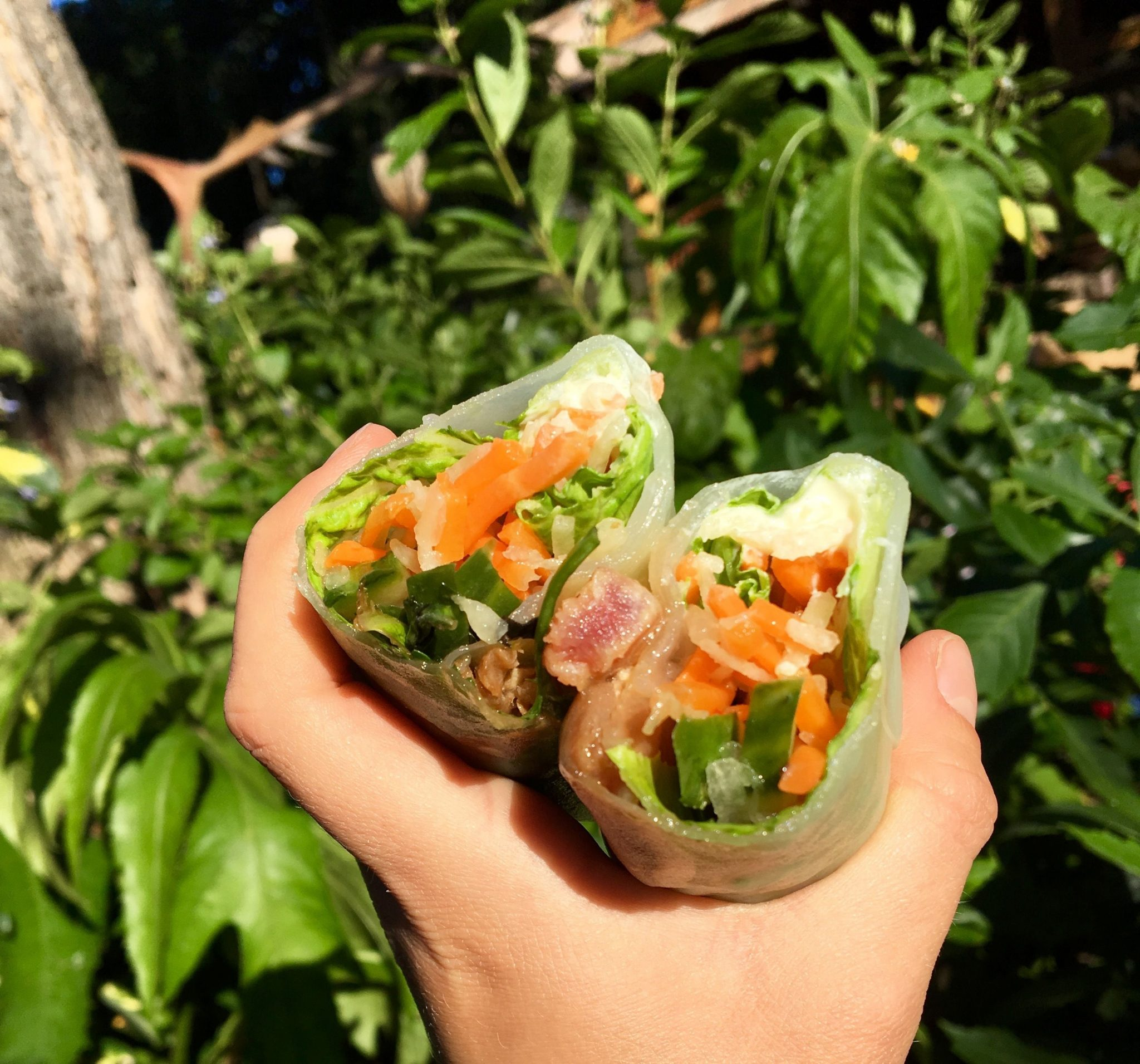 Ahi Poke Spring Roll and Hummus Trio Roll Out at Bengal Barbecue