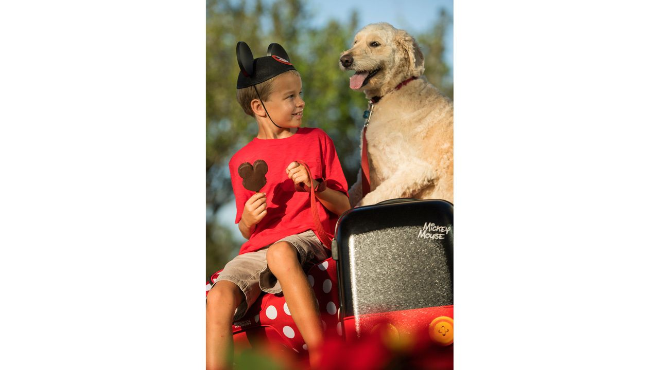 Dogs Welcome at Select Walt Disney World Resort Hotels