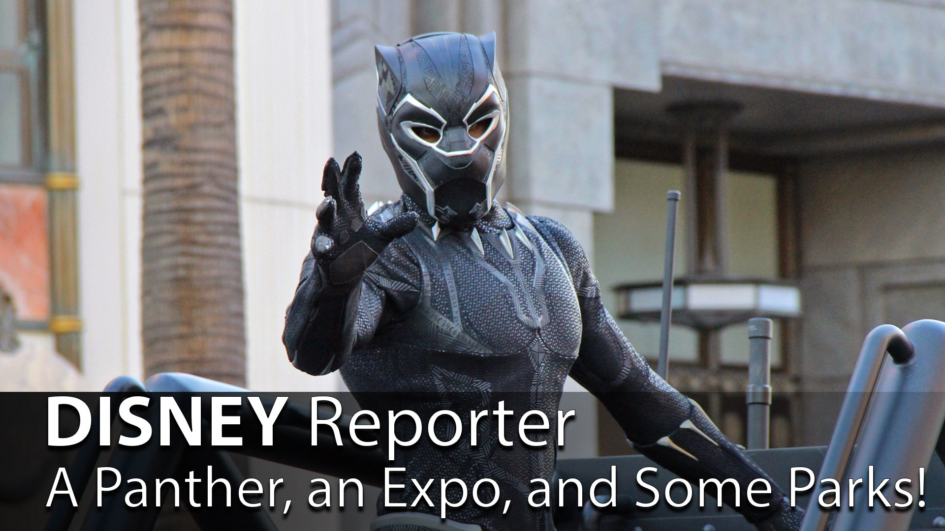 A Panther, an Expo, and Some Parks! - DISNEY Reporter