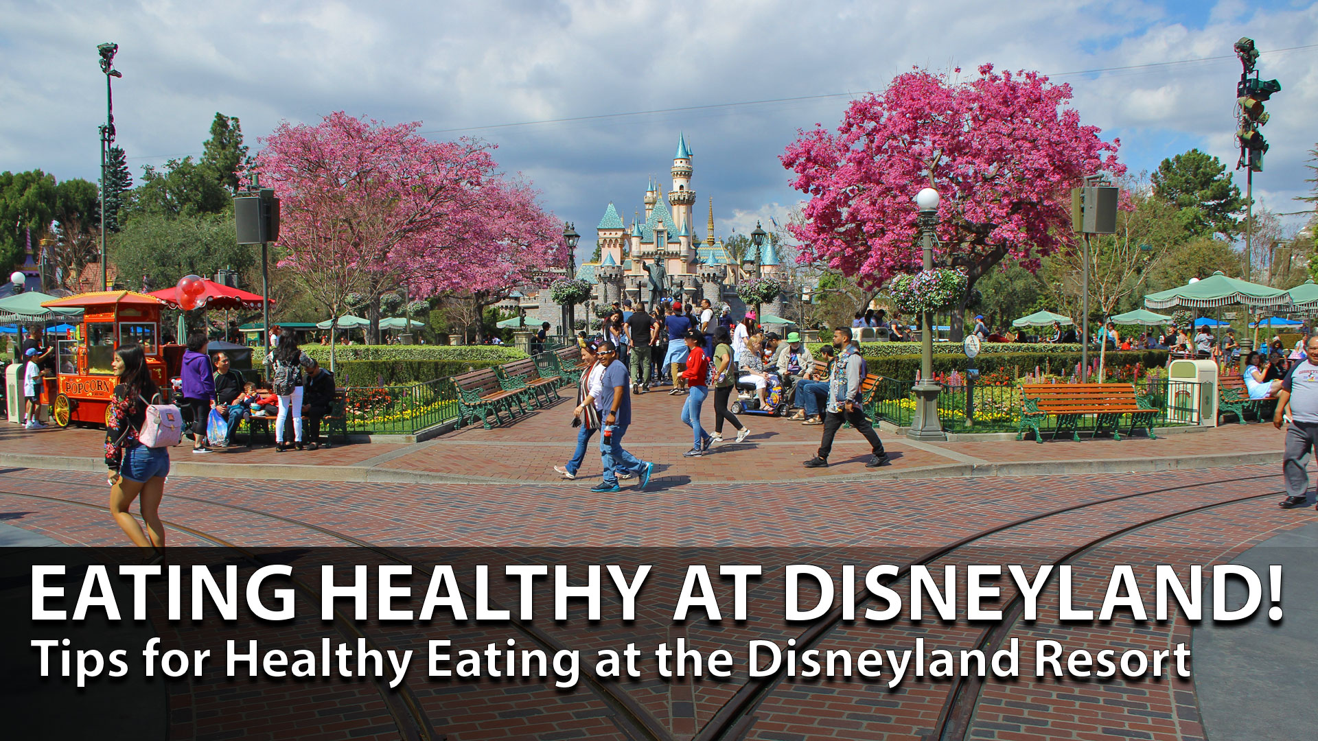 Tips for Eating Healthy at the Disneyland Resort