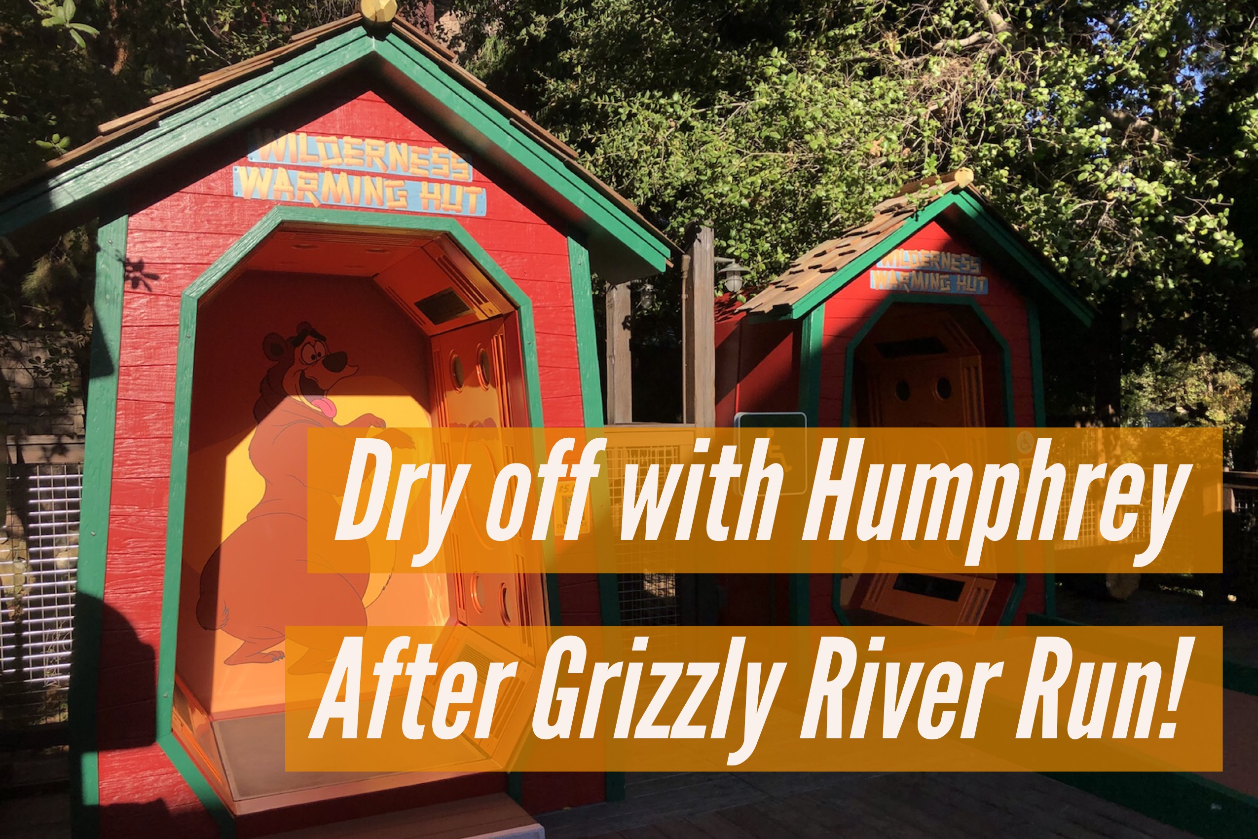 Stay Dry with The Bear-y Cool New Dryers in Grizzly Peak