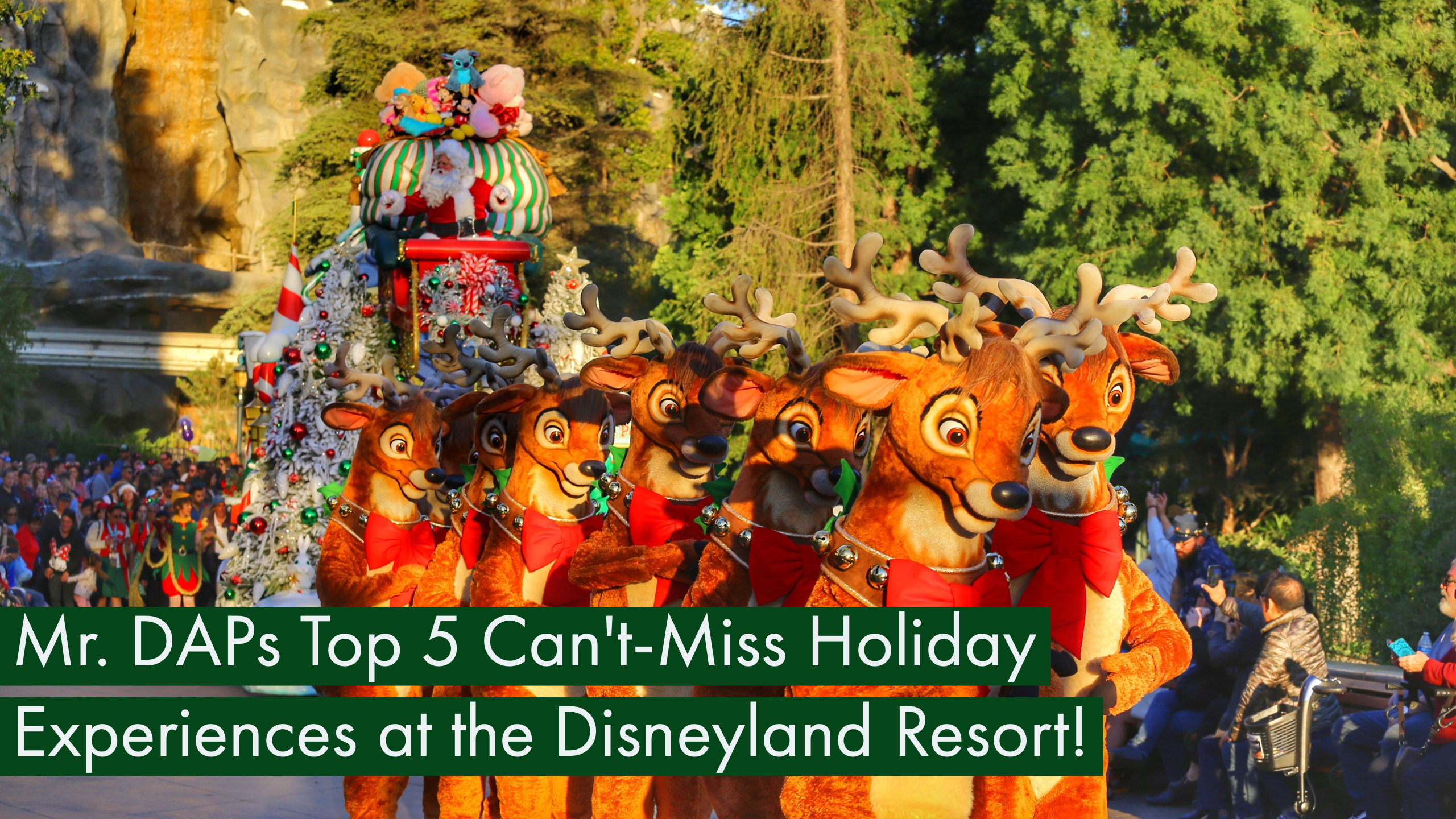 Mr. DAPs Top 5 Can't-Miss Holiday Experiences at the Disneyland Resort!