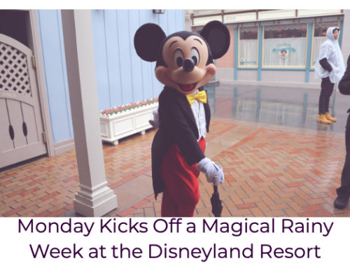 Monday Kicks Off a Magical Rainy Week at the Disneyland Resort