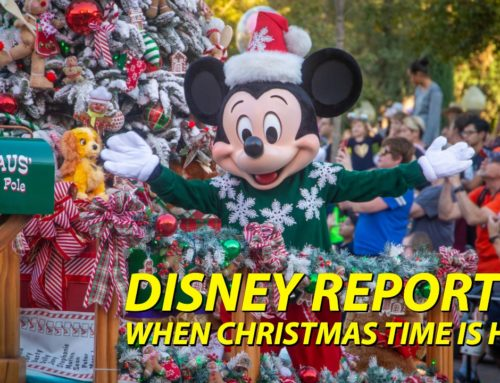 When Christmas Time is Here – DISNEY Reporter