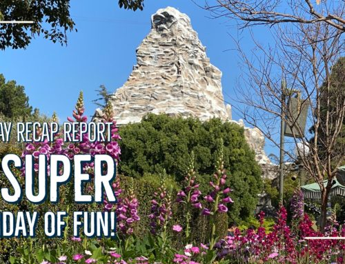 Sunday Recap Report – A Super Sunday of Fun!