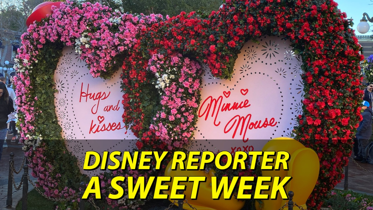 A Sweet Week - DISNEY Reporter