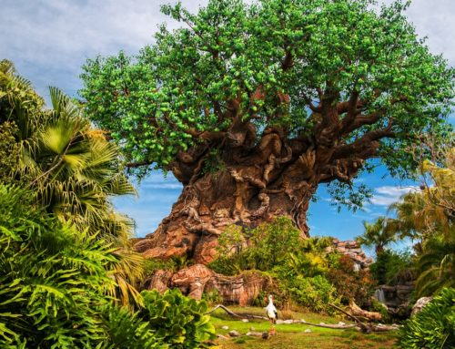 Disney's Animal Kingdom To Celebrate the 50th Anniversary of Earth Day April 18-22