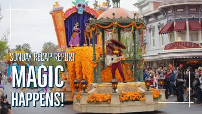 Sunday Recap Report – Magic Happens!