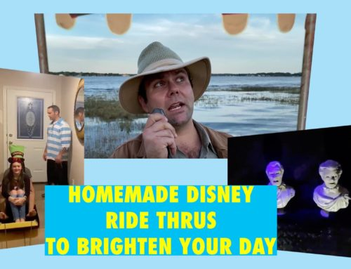 Homemade Disney Rides Made By Creative Families to Brighten Your Day
