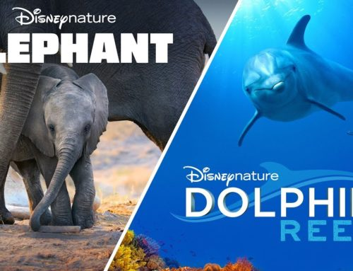Disney+ to Debut Disneynature's Elephant with Meghan Markle & Dolphin Reef with Natalie Portman to Honor Earth Month