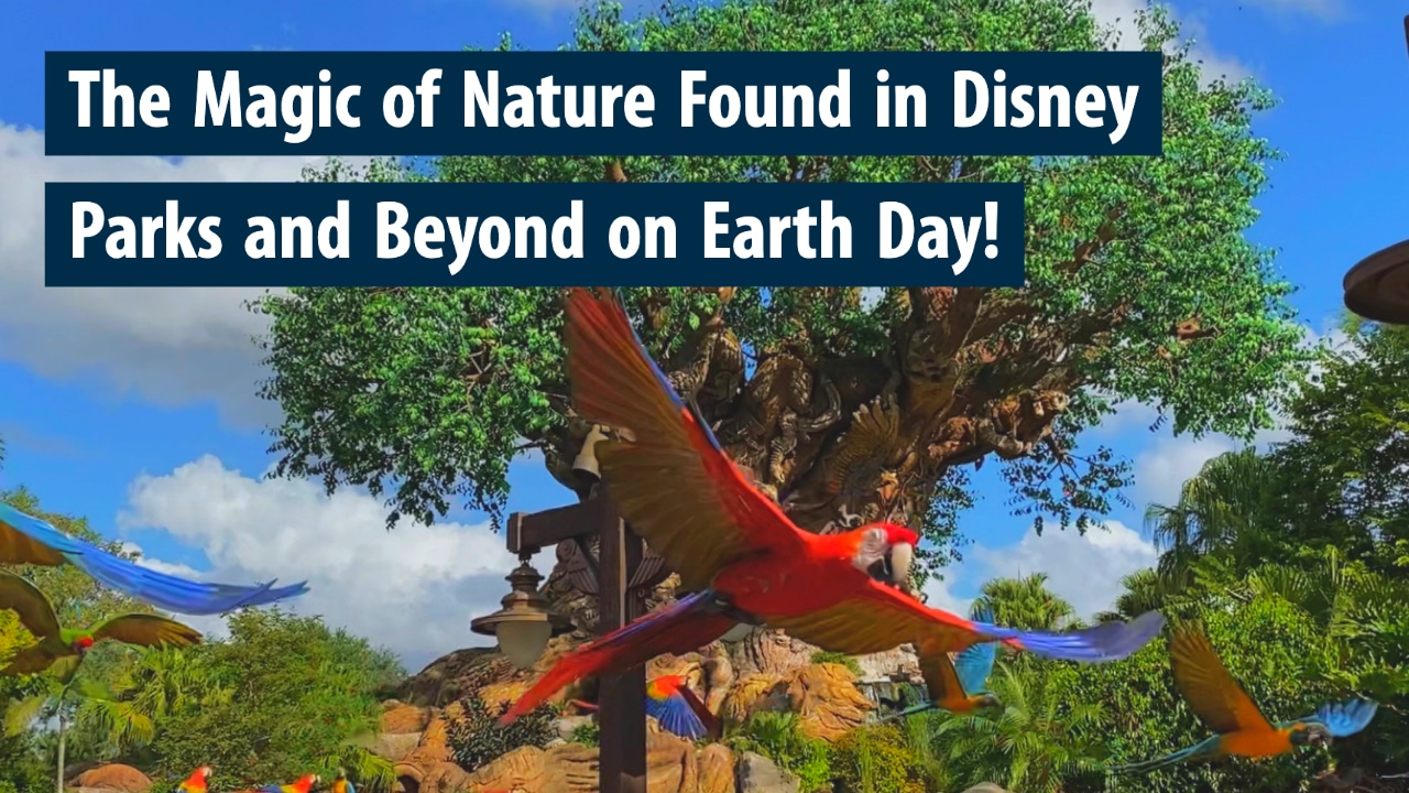 The Magic of Nature Found in Disney Parks and Beyond on Earth Day!
