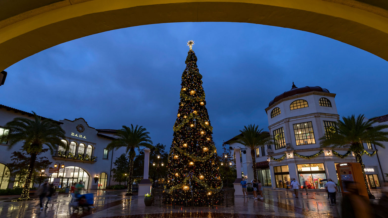 Disney Springs Gets Into the Spirit of the Season with Christmas Tree Stroll
