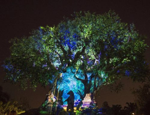 Experience Nighttime Like Never Before at Disney's Animal Kingdom!